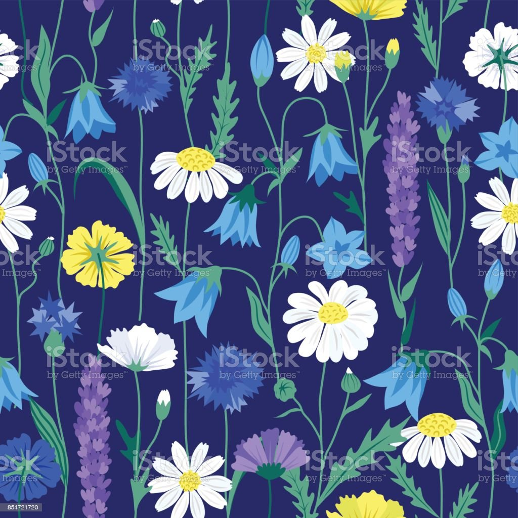 Floral summer seamless pattern + chamomiles + cornflowers + buttercups + lupine + bellflowers in bright colors on dark blue background vector art illustration