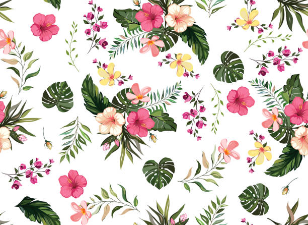 Floral tropical  seamless pattern background with exotic flowers, jungle leaves, monstera leaf, orchid, bird of paradise flower white background Floral tropical  seamless pattern background with exotic flowers, jungle leaves, monstera leaf, orchid, bird of paradise flower white background tropical flower stock illustrations