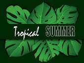 istock Floral tropical summer background with monstera leaves. Summer tropical leaf background with exotic palm leaves. Party flyer template. Handwriting lettering. Sale banner, poster with palm leaves, jungle leaf and handwriting lettering. 1214038184