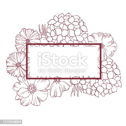 istock Floral vector  background. Line drawing different flowers, hydrangeas, cosmos and wild rose. 1210349804
