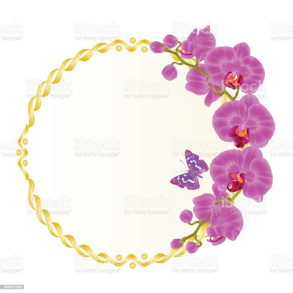 花のベクトルの丸い紫の蘭の花熱帯植物コチョウラン ゴールデン