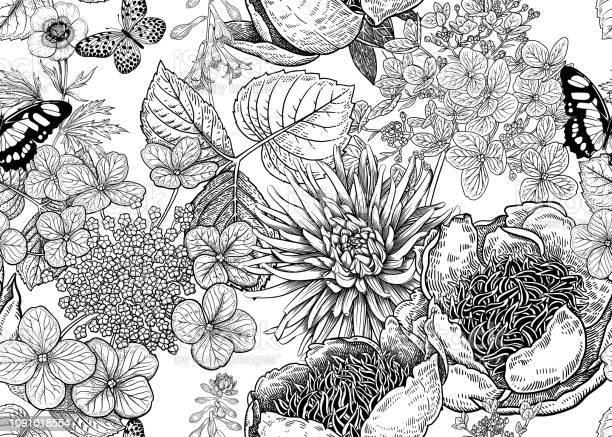 Floral vector seamless pattern peonies aster and hydrangea vector id1091018554?b=1&k=6&m=1091018554&s=612x612&h=wxxhptblpkql7sxdcmyzf4pjp2llkhekh5jbvp2live=