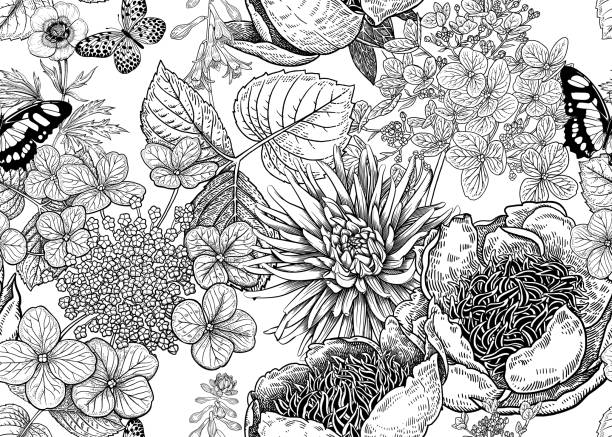 Floral vector seamless pattern. Peonies, aster and hydrangea. Peonies, hydrangea, aster and butterfly. Floral background. Vintage seamless pattern. Black and white. Bouquets of flowers, leaves and branches. Oriental style. Vector illustration art. butterfly insect stock illustrations