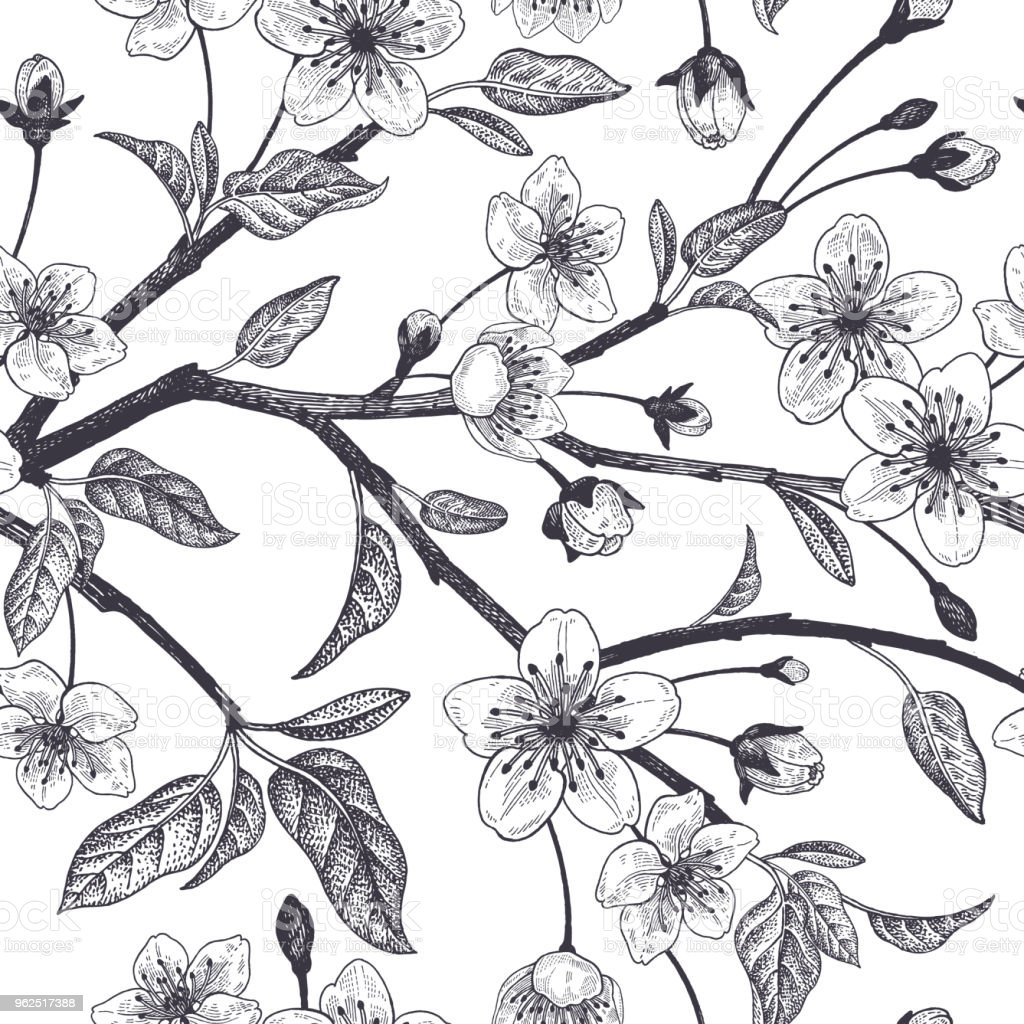Floral vintage seamless pattern with Japanese cherry. - Royalty-free Abstract stock vector