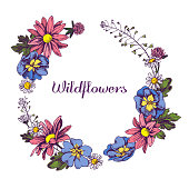 Floral Wreath of Wildflowers Hand drawn vector illustation stock