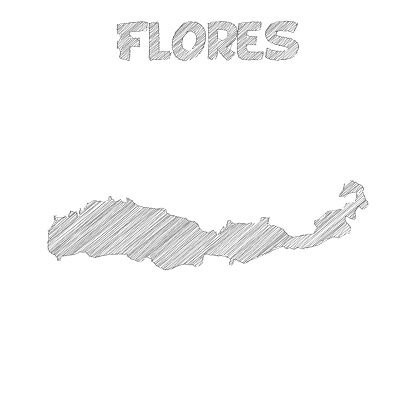 Flores map hand drawn on white background
