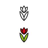 istock Flower 17 945909618