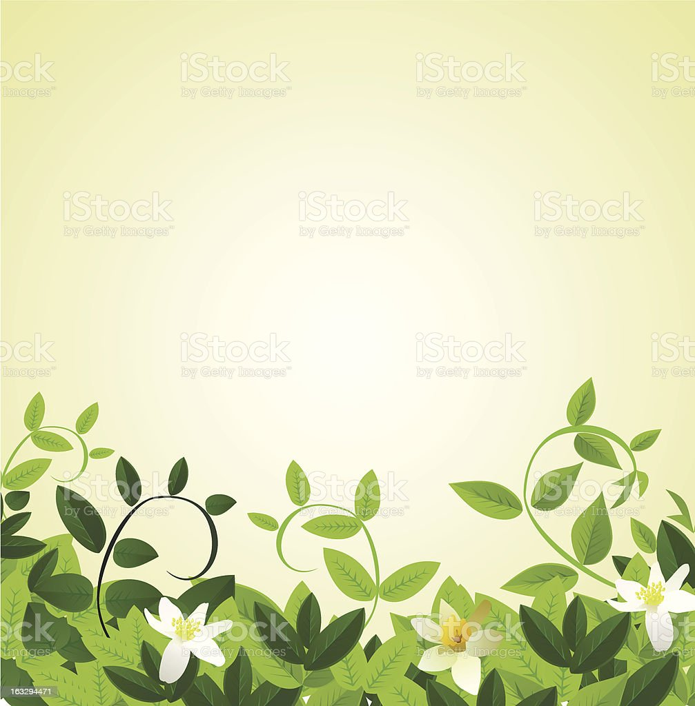 flower 8 march's card royalty-free stock vector art
