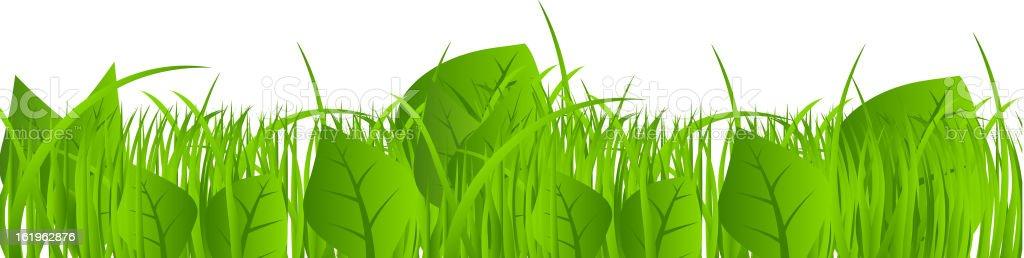 Flower and grass Borders set. vector illustration royalty-free stock vector art