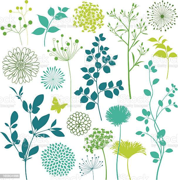 Flower and leaf design elements vector id165804996?b=1&k=6&m=165804996&s=612x612&h=ugkislzudse7rllutjonygbdbewdgunes7hbyu xncm=