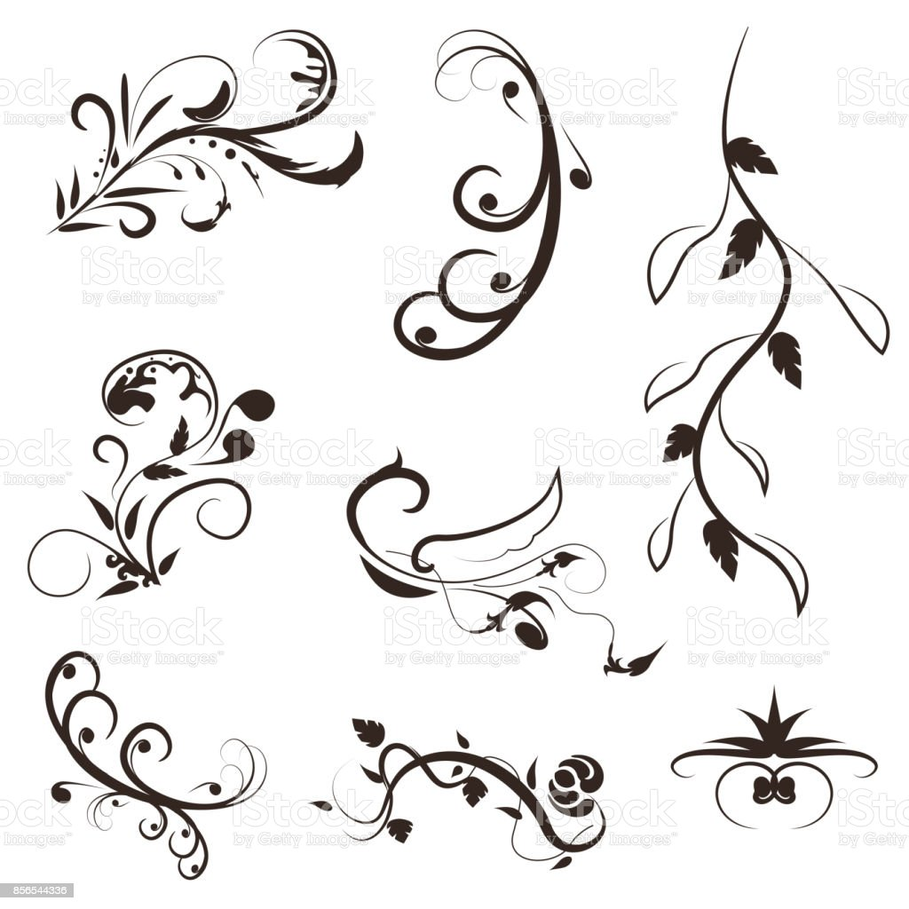 Flower And Leaves Vector Swirl Line Designfloral Illustration Set Royalty Free