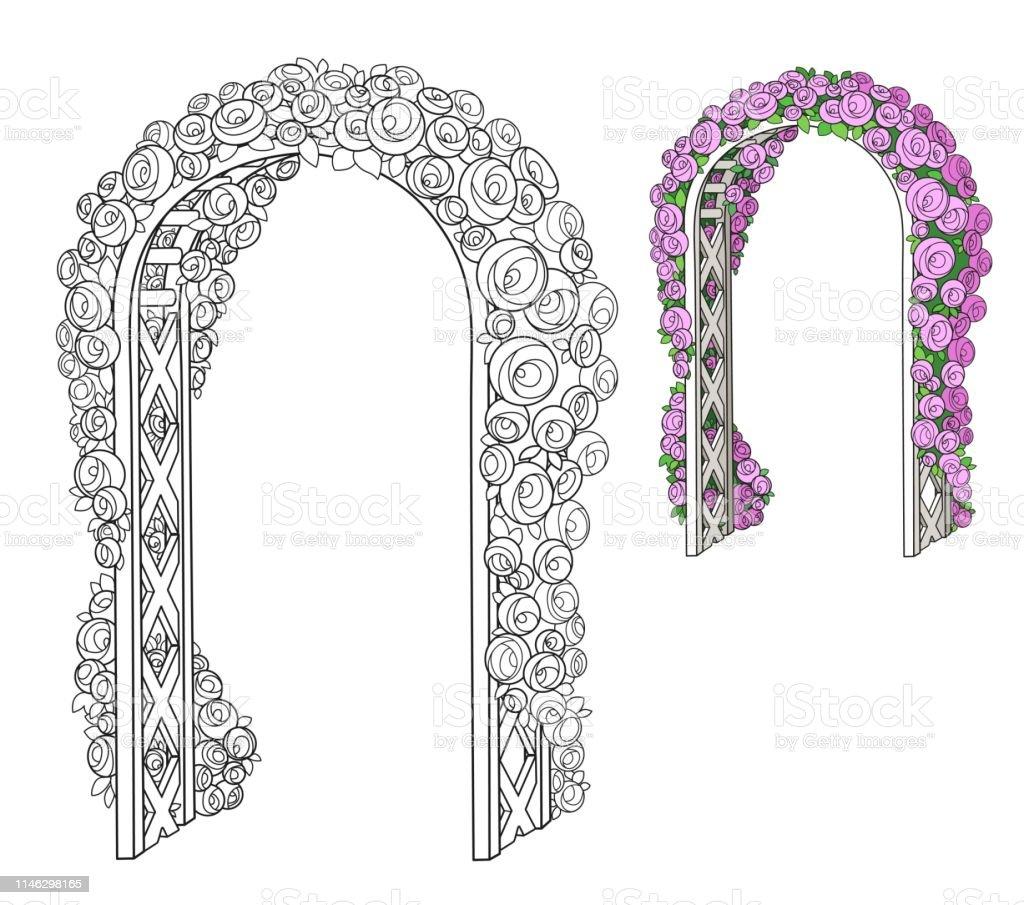 Vetores De Arco De Flor Trançado Rosas Cor E Delineado Para