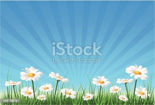 istock Flower Background 165766161