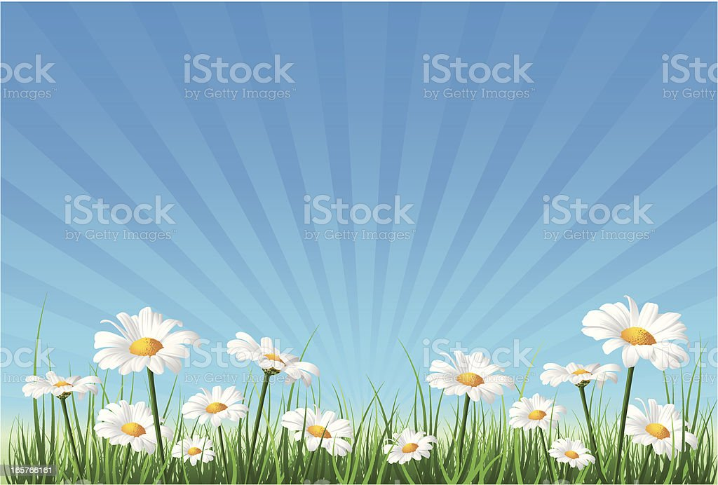 Flower Background vector art illustration
