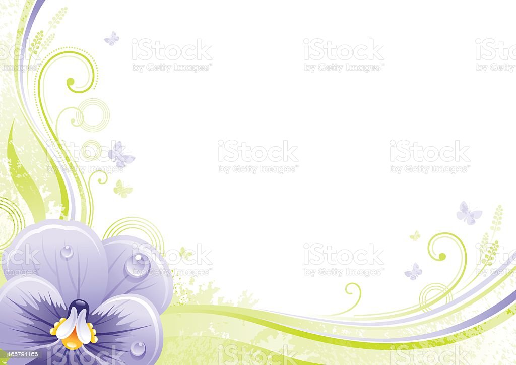 Flower background with copyspace: Viola royalty-free stock vector art