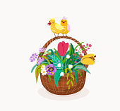 Flower basket with couple birds on the handle of the pottle isolated on white background. Spring vector illustration with springtime floral plants color tulips, snowdrops, chamomile, herbal, grass.