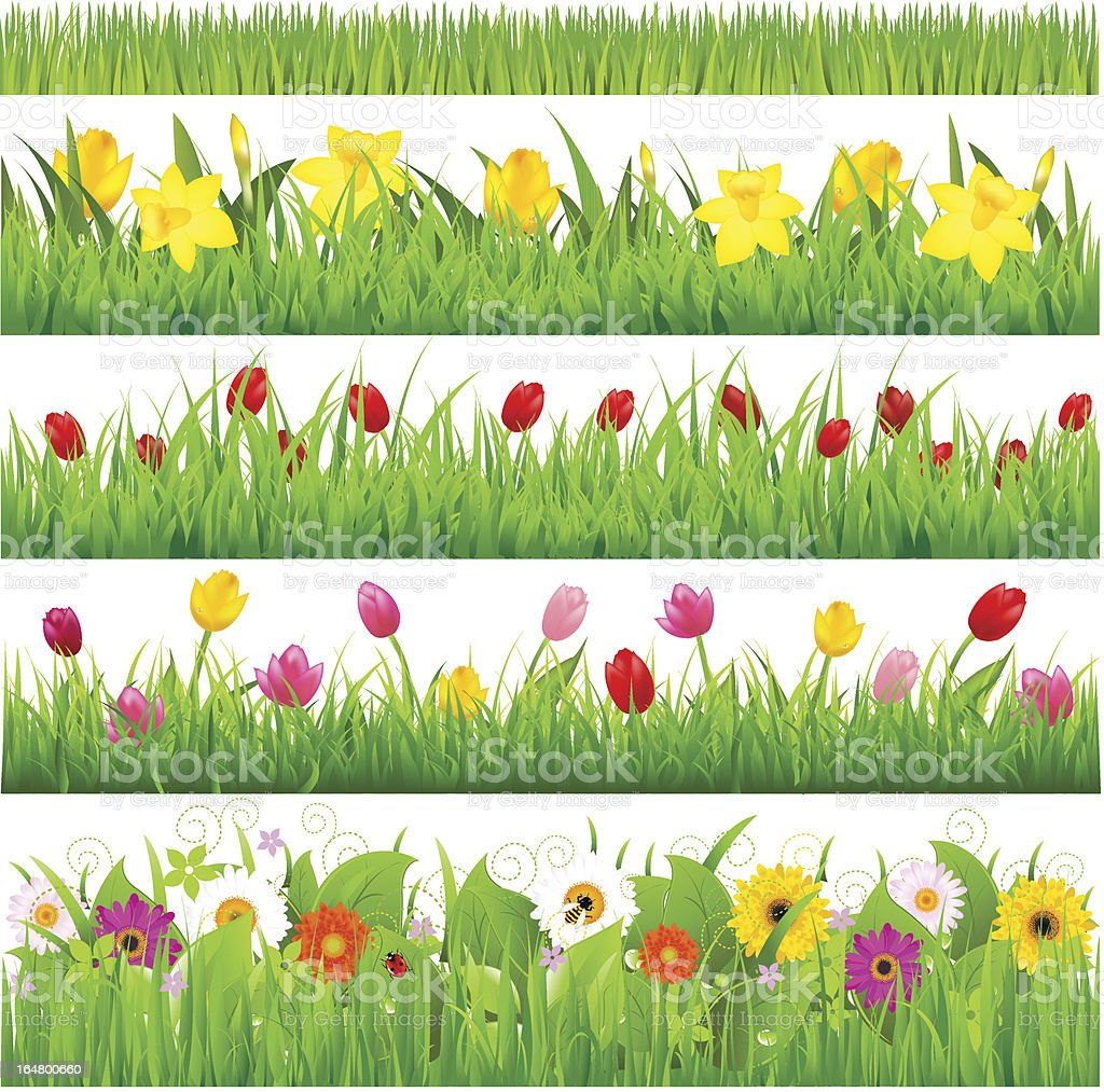 Flower Borders Set vector art illustration