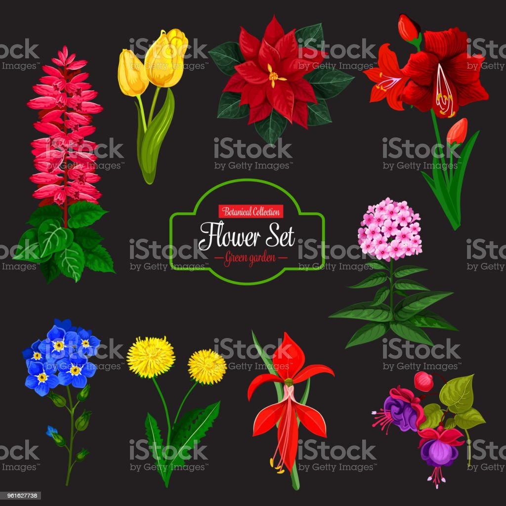 Flower bouquet cartoon icon for floral design stock vector art flower bouquet cartoon icon for floral design royalty free flower bouquet cartoon icon for floral izmirmasajfo