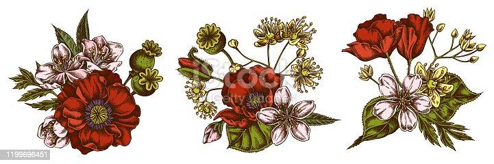 Flower bouquet of colored almond, poppy flower, tilia cordata stock illustration