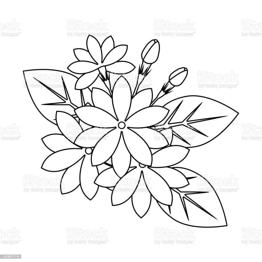 çiçek Boyama Kitabı Stok Vektör Sanatı Aromaterapinin Daha Fazla