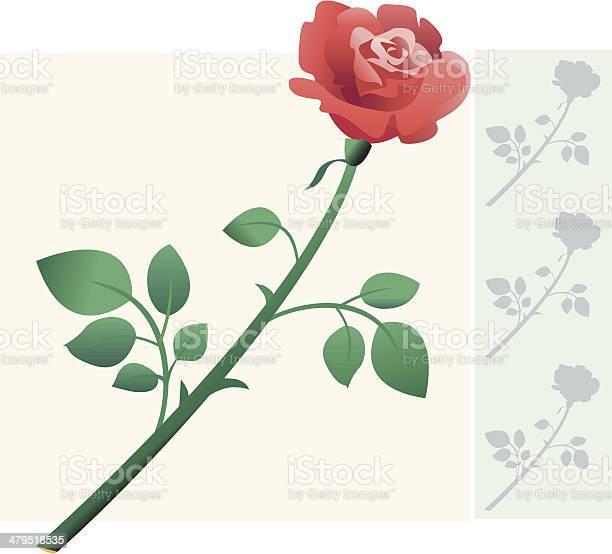 Flower decoration rose vector id479518535?b=1&k=6&m=479518535&s=612x612&h=n7jtfdrs1f3x1vq  xtawa1ymmuct12unrtiake8jrs=