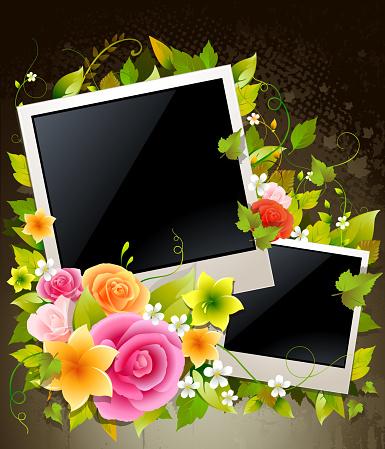 Flower Display Frames