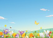 Vector illustration of a meadow full of beautiful flowers, butterflies and bumblebees in spring or summer. In the background are hills and a blue sky with space for text.