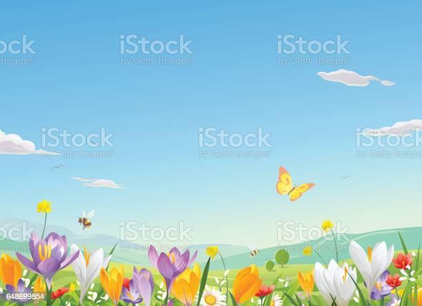 Flower field vector id648699854?b=1&k=6&m=648699854&s=612x612&h=wajuytnhdnjahisavam9u8ewjymqnwj75kp cb7eilq=
