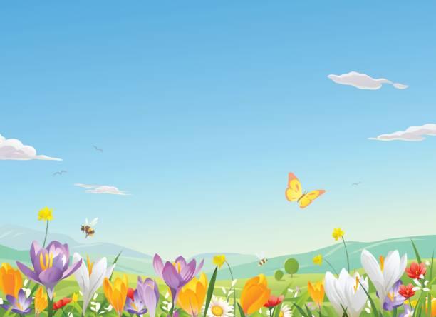 Flower Field vector art illustration
