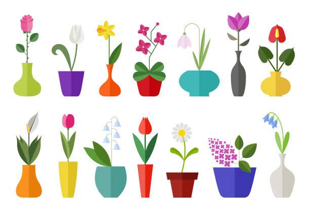 stockillustraties, clipart, cartoons en iconen met bloem platte icon set geïsoleerd op wit. - madeliefje