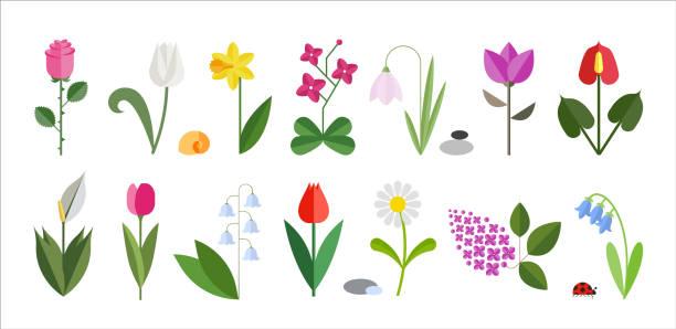 stockillustraties, clipart, cartoons en iconen met bloem platte pictogrammenset geïsoleerd op wit. - madeliefje