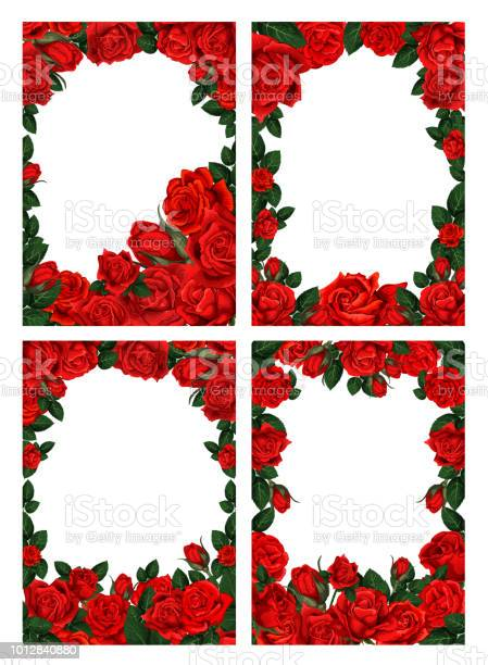Flower frame borders with red roses vector id1012840880?b=1&k=6&m=1012840880&s=612x612&h=3wxte9itgpbn8xjrsu2jumob5ldzsruzrm459nr0pxc=