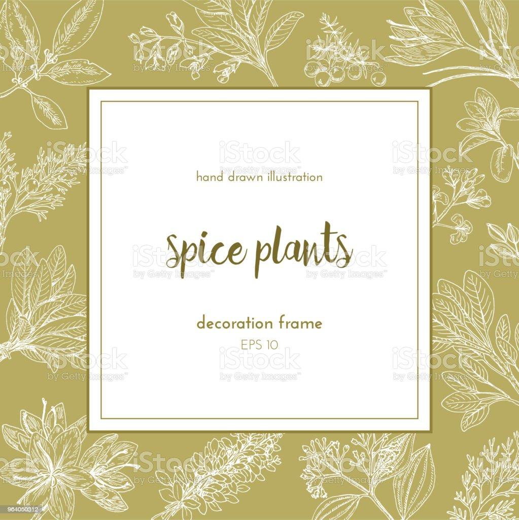 フラワー フレーム デザイン。手描きのイラスト。大ざっぱなヴィンテージスタイルの植物。.ベクトル図 - アザミのロイヤリティフリーベクトルアート