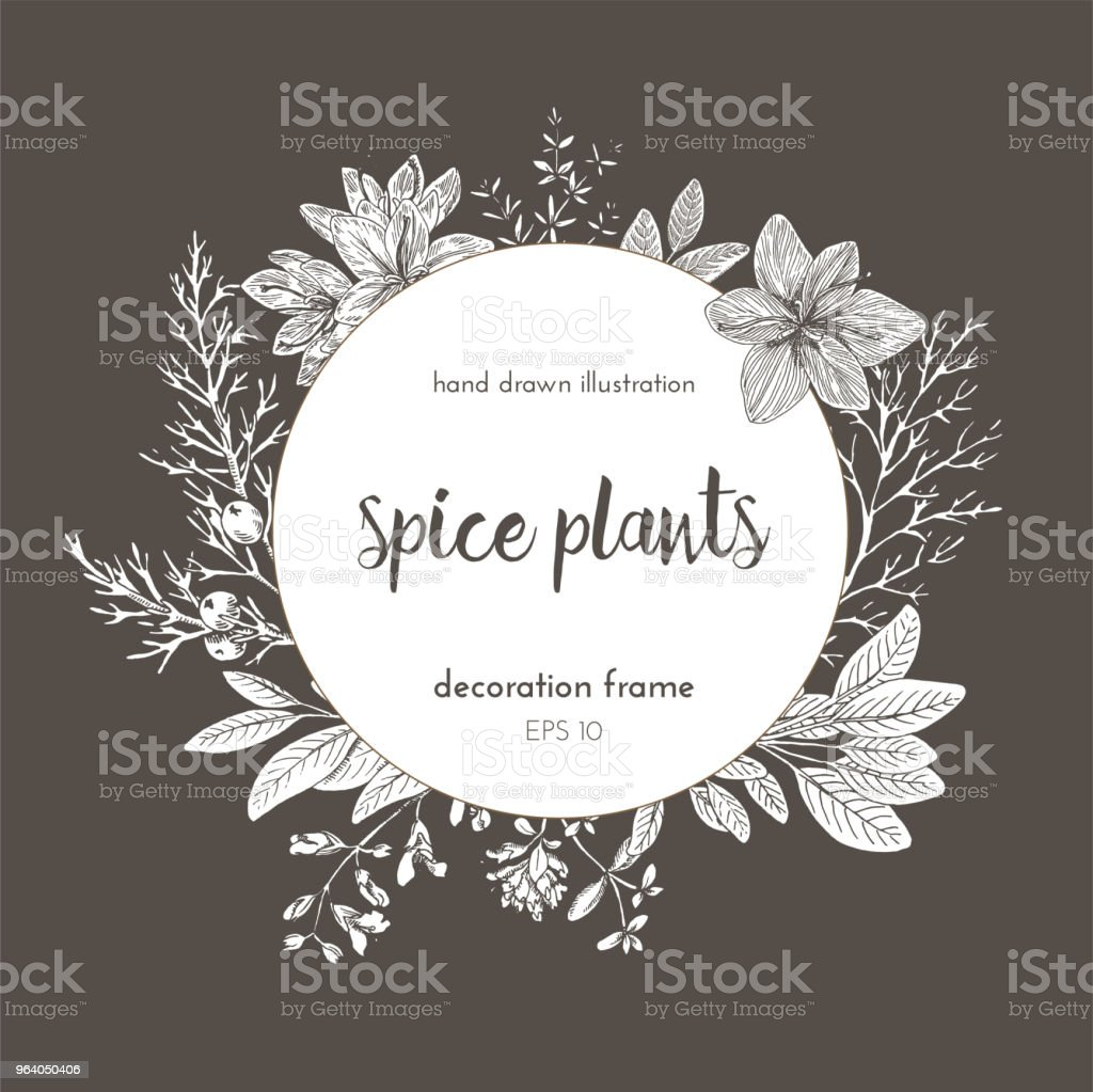 Flower frame design. hand painted illustration. Vintage sketchy style plants. . Vector illustration - Royalty-free Aromatherapy stock vector