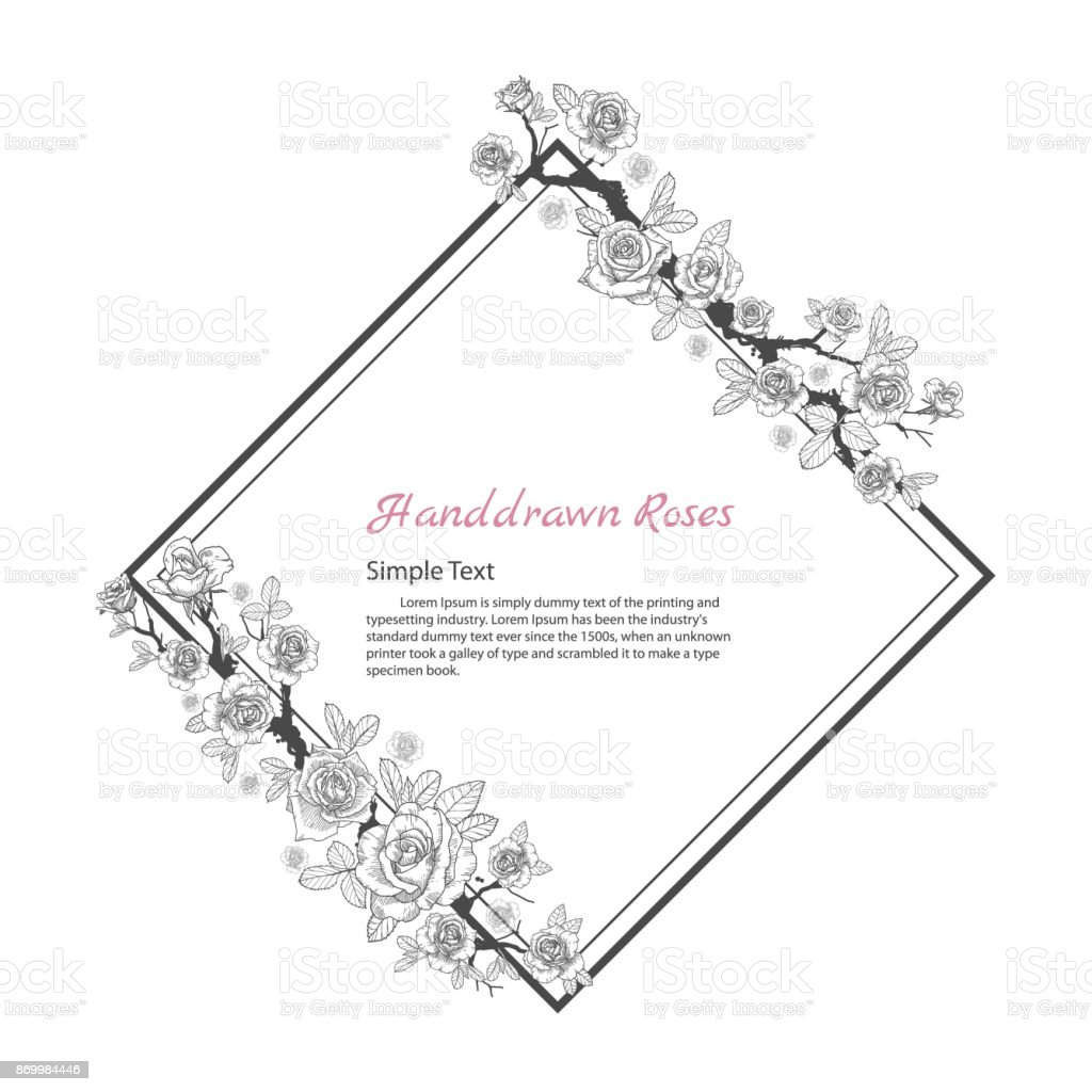 Flower Frame Of Rose Drawing And Sketch On White Background Stock Diagram A In Black Royalty Free