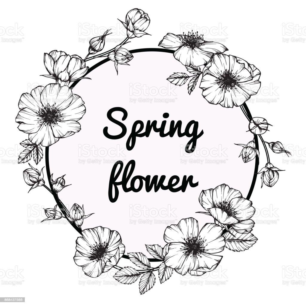 Flower Frame Line Drawing : Flower frame of rose floral drawing and sketch with black