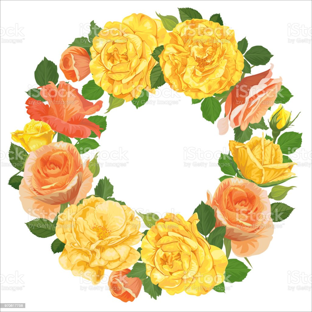 Flower Frame Of Yellow Roses With Bud And Leaves On White Background