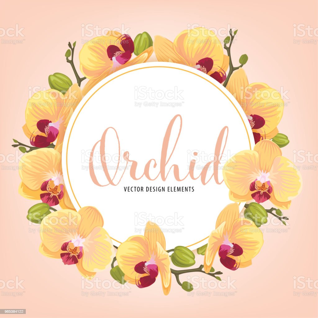 Cadre de fleur avec fond orchidée jaune. - clipart vectoriel de Abstrait libre de droits