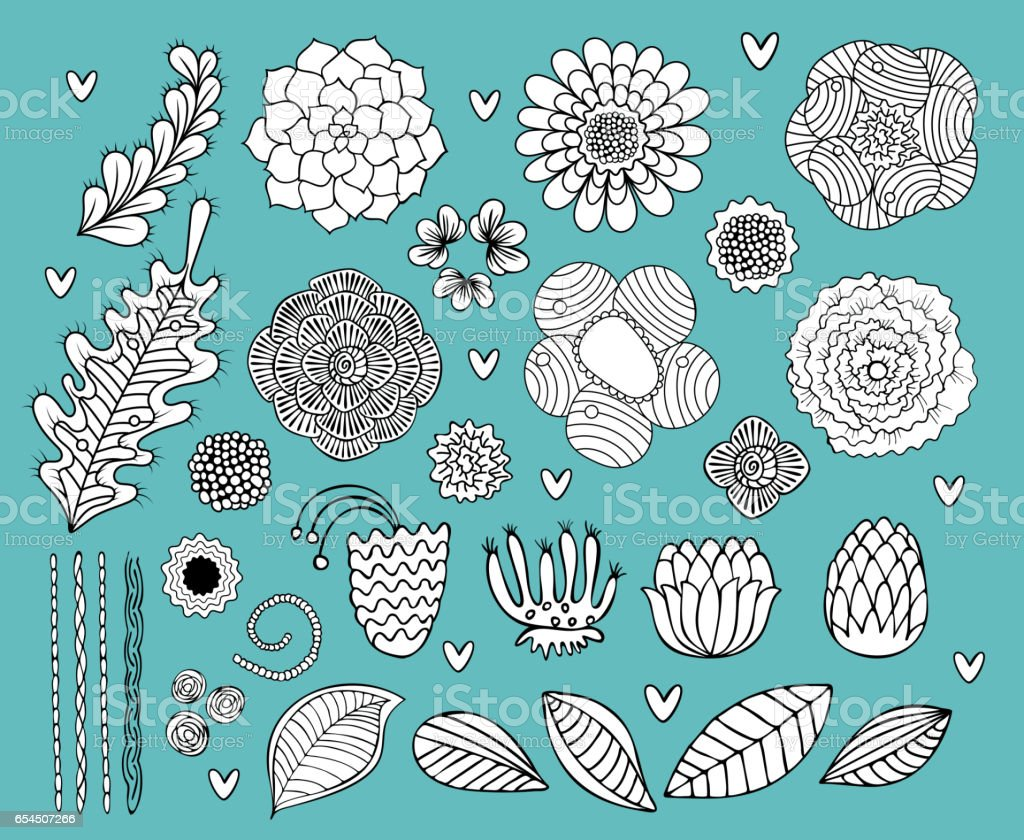 Flower hand drawn black and white vector set vector art illustration