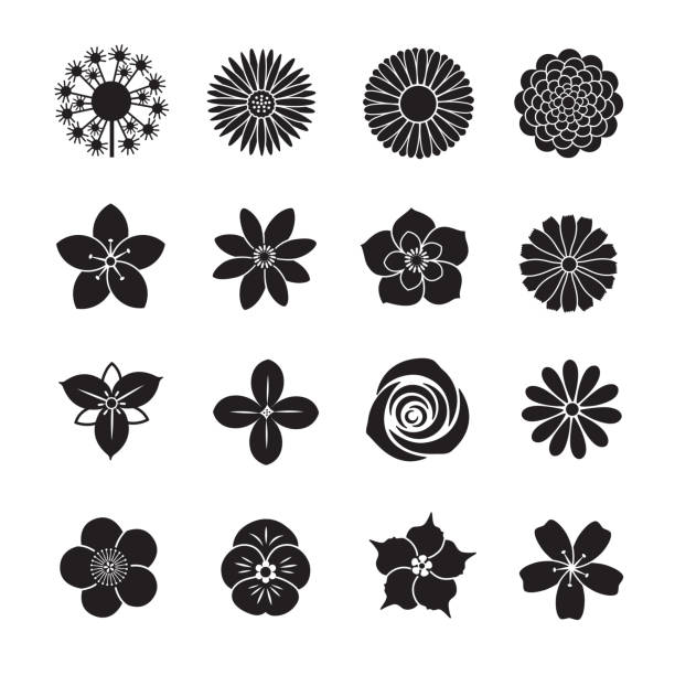 Flower icon collection Flower icon collection, Set of 16 editable filled, Simple clearly defined shapes in one color. trillium stock illustrations