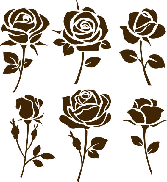 Flower icon. Set of decorative rose silhouettes. Vector rose Vector illustration rose flower stock illustrations