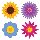 Flower icon set - sunflower, chrysanthemum, daisy and gerber isolated on white background