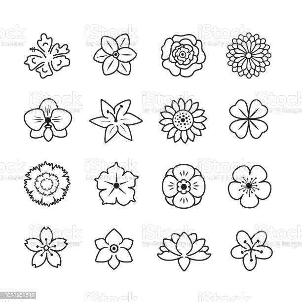 Flower icon set vector id1021952812?b=1&k=6&m=1021952812&s=612x612&h=s82atluspve3htqxuaw az4crzm3wbjon4xmqo8qhmk=
