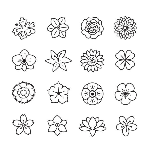 Flower icon set Flower icon set, thin line , set of 16 editable filled, Simple clearly defined shapes in one color. in bloom stock illustrations