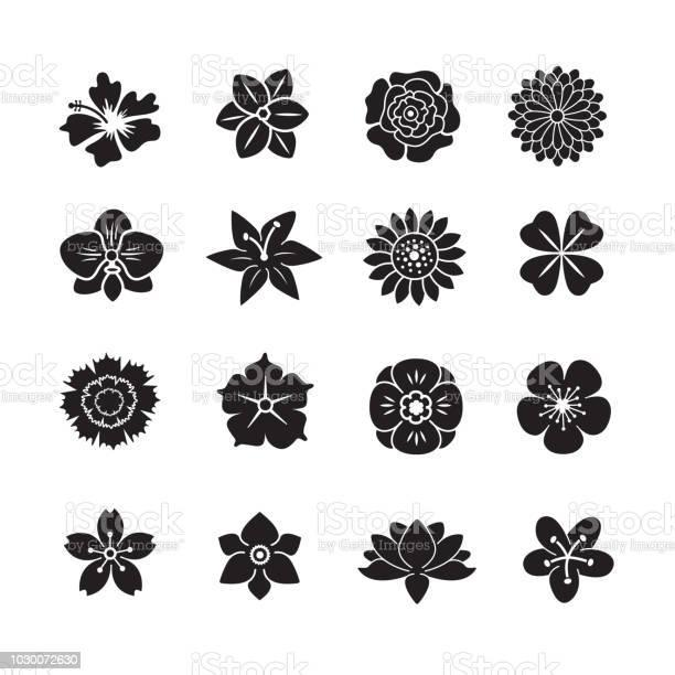 Flower icon set vector id1030072630?b=1&k=6&m=1030072630&s=612x612&h=4ubkxrhgpbmmhvcxrx lfrxp4e6xo3cwm5u9cy2jjnu=