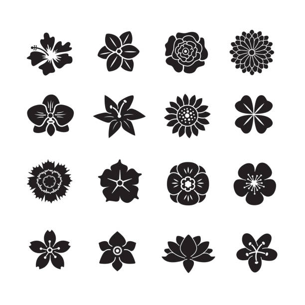 çiçek icon set - flowers stock illustrations