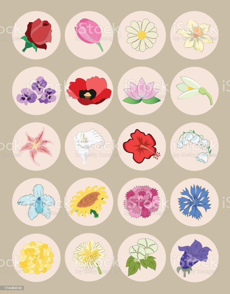 flower icon set royalty-free stock vector art
