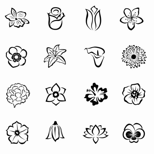 Flower icon set 16 Flower set. Black silhouettes on white background. Isolated symbols of flowers. Vector water lily stock illustrations