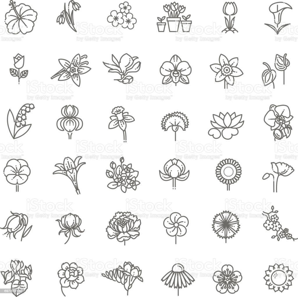 Fleur Icon Set - Illustration vectorielle - clipart vectoriel de Anthurium libre de droits