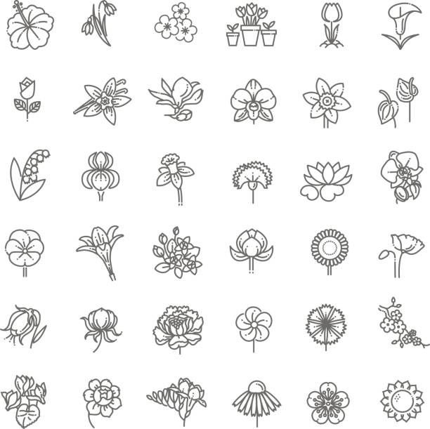 stockillustraties, clipart, cartoons en iconen met bloem icon set - vectorillustratie - iris plant